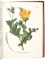 Roques | Phytographie médicale, 1821[-1825], 2 volumes
