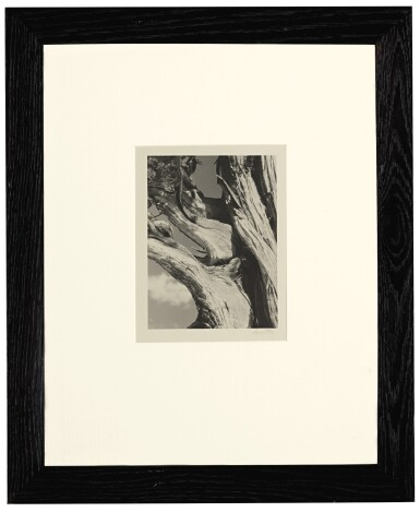 View 2. Thumbnail of Lot 47. The Sierra Club Outing, 1930.