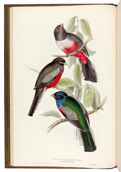 View 2. Thumbnail of Lot 37. GOULD, J. | Monograph of the Trogonidae, London 1835-1838, folio.