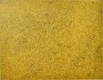 Yayoi Kusama 草間彌生 | Gold-Sky-Nets 黃金天網