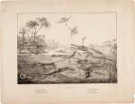 Henry de la Beche | Duria Antiquior, lithograph, 1830
