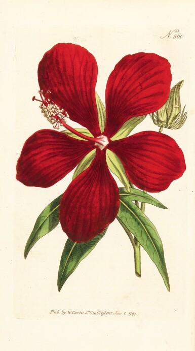 View 1. Thumbnail of Lot 5. Curtis   The Botanical Magazine; or Flower-Garden Displayed, 1790–1788–1805, 20 volumes.