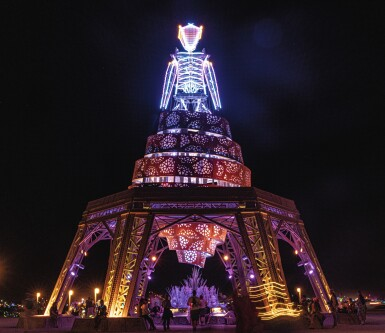 View 1. Thumbnail of Lot 13. Virtual Conversation with Burning Man Project.