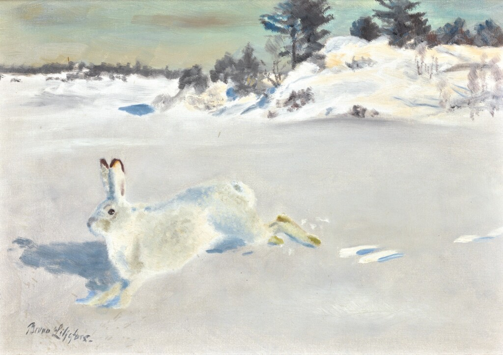 BRUNO LILJEFORS | White Hare in the Snow