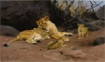 WILHELM KUHNERT | A LIONESS AND HER CUBS