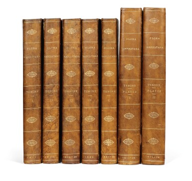 View 4. Thumbnail of Lot 341. Tenore. Flora Napolitana. 1811-[1838]. 7 volumes.