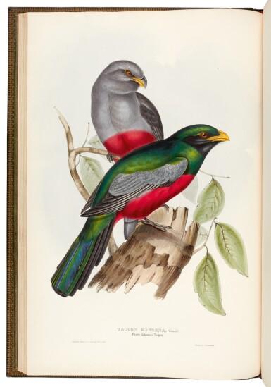 View 3. Thumbnail of Lot 37. GOULD, J. | Monograph of the Trogonidae, London 1835-1838, folio.