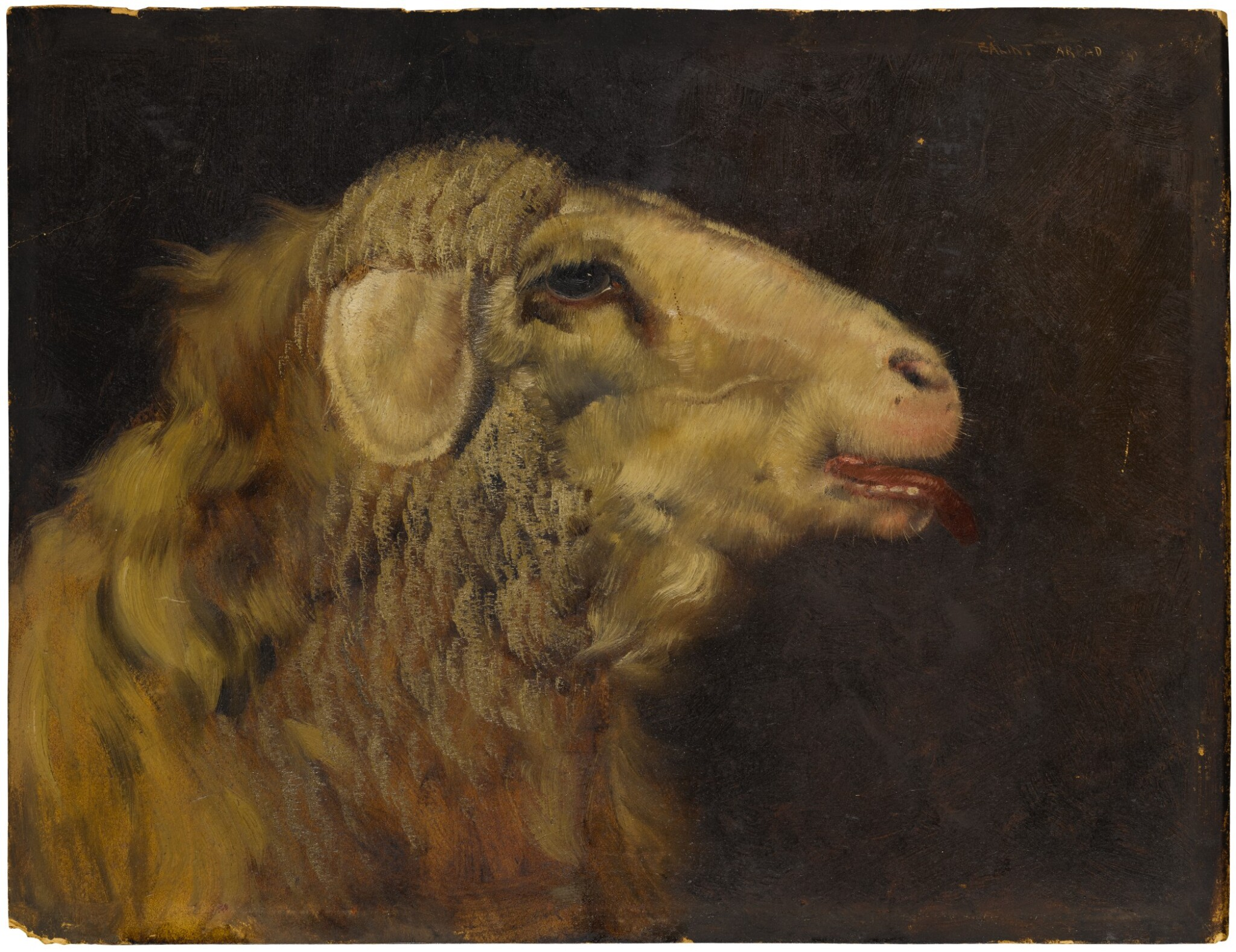 View full screen - View 1 of Lot 111. Sold Without Reserve | ARPAD BALINT | A PROFILE HEAD STUDY OF A LAMB.