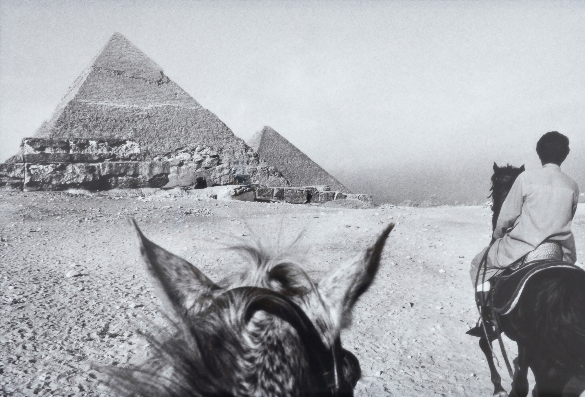 View full screen - View 1 of Lot 35. FOUAD ELKOURY | CHEVAL ET PYRAMIDE.