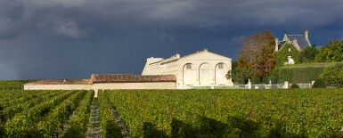 View 1. Thumbnail of Lot 44. Château Mouton Rothschild 2003  (1 IMP).