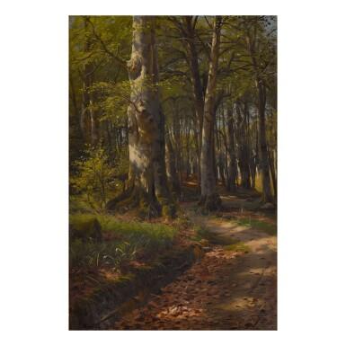 PEDER MØNSTED  | DAPPLED LIGHT ON A WOODLAND PATH