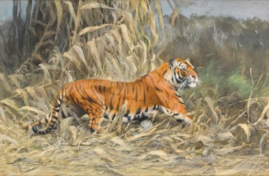 View 1. Thumbnail of Lot 147. Im Dschungel (Tiger).