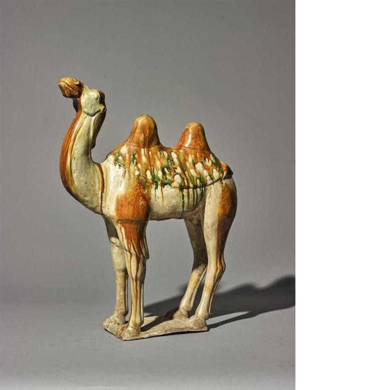 Chinese Tang Dynasty Sancai-Glazed Camel
