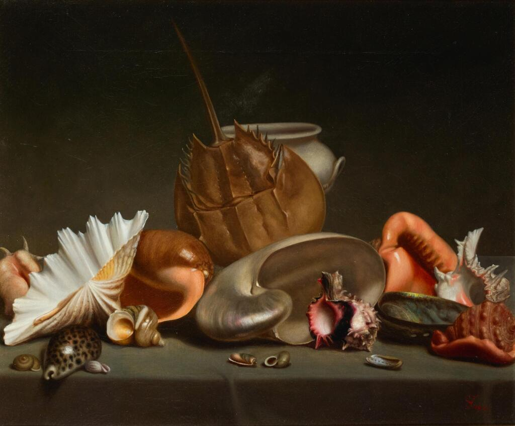 FRENCH SCHOOL, 19TH CENTURY | A still life with sea shells and molluscs