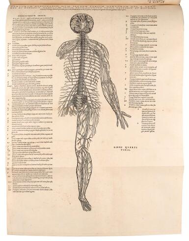 View 3. Thumbnail of Lot 55. Vesalius | De humani corporis fabrica, Basel, 1555, modern crushed burgundy morocco.