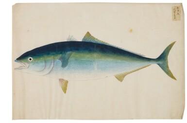 View 3. Thumbnail of Lot 118. ATTRIBUTED TO KAWAHARA KEIGA (1786–1860) STUDIO, EDO PERIOD, 19TH CENTURY, A GROUP OF TWENTY-FOUR FISH.